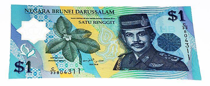 Hình ảnh hoa simpor trên đồng 1 đô của Brunei