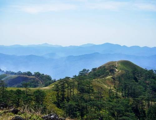 Núi Chúa được UNESCO công nhận là Khu dự trữ sinh quyển toàn cầu.